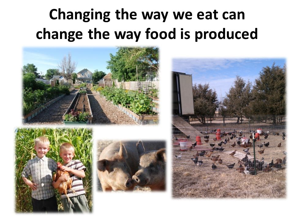 Changing the way we eat can change the way food is produced