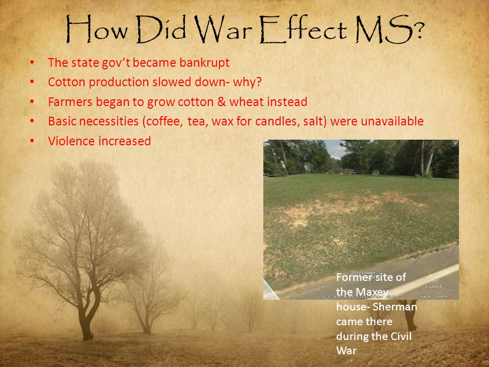 How Did War Effect MS? The state gov't became bankrupt Cotton production slowed down- why? Farmers began to grow cotton & wheat instead Basic necessit