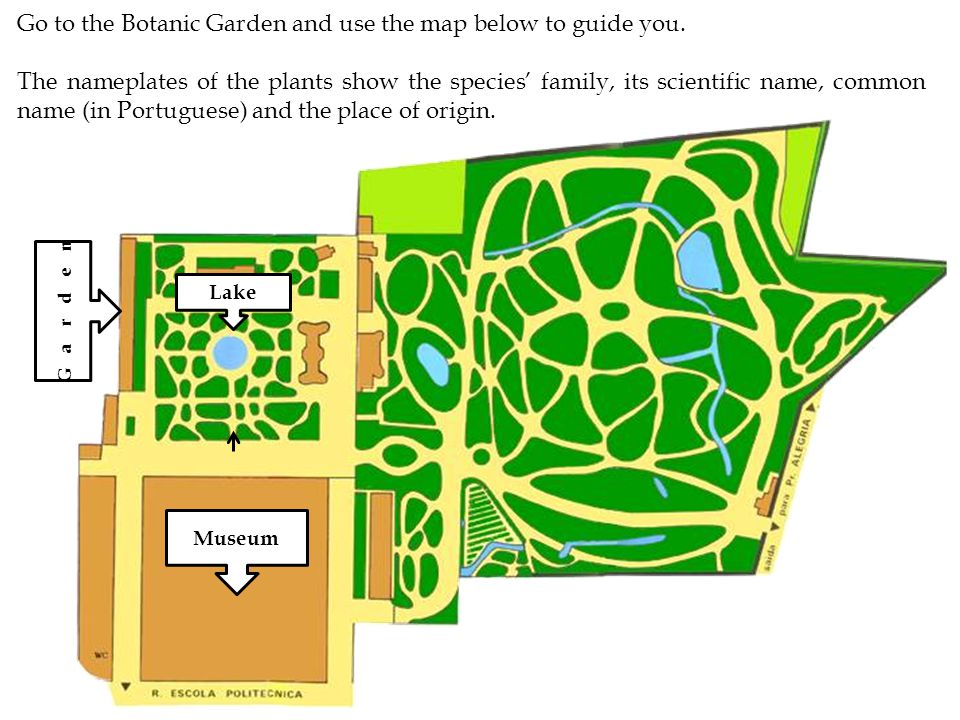 Museum Lake Go to the Botanic Garden and use the map below to guide you.