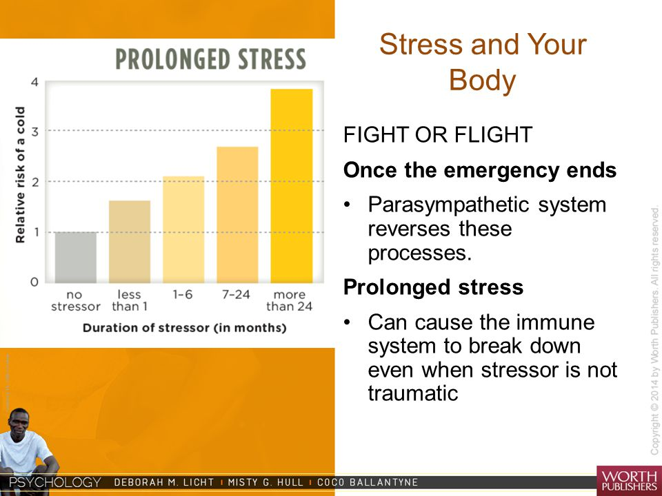 Courtesy Dr. Julie Gralow Stress and Your Body FIGHT OR FLIGHT Once the emergency ends Parasympathetic system reverses these processes. Prolonged stre