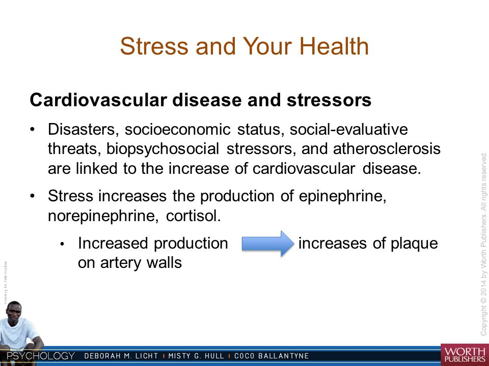 Courtesy Dr. Julie Gralow Stress and Your Health Cardiovascular disease and stressors Disasters, socioeconomic status, social-evaluative threats, biop