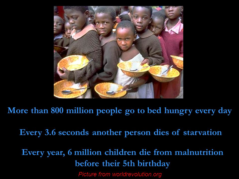 More than 800 million people go to bed hungry every day Every 3.6 seconds another person dies of starvation Every year, 6 million children die from malnutrition before their 5th birthday Picture from worldrevolution.org