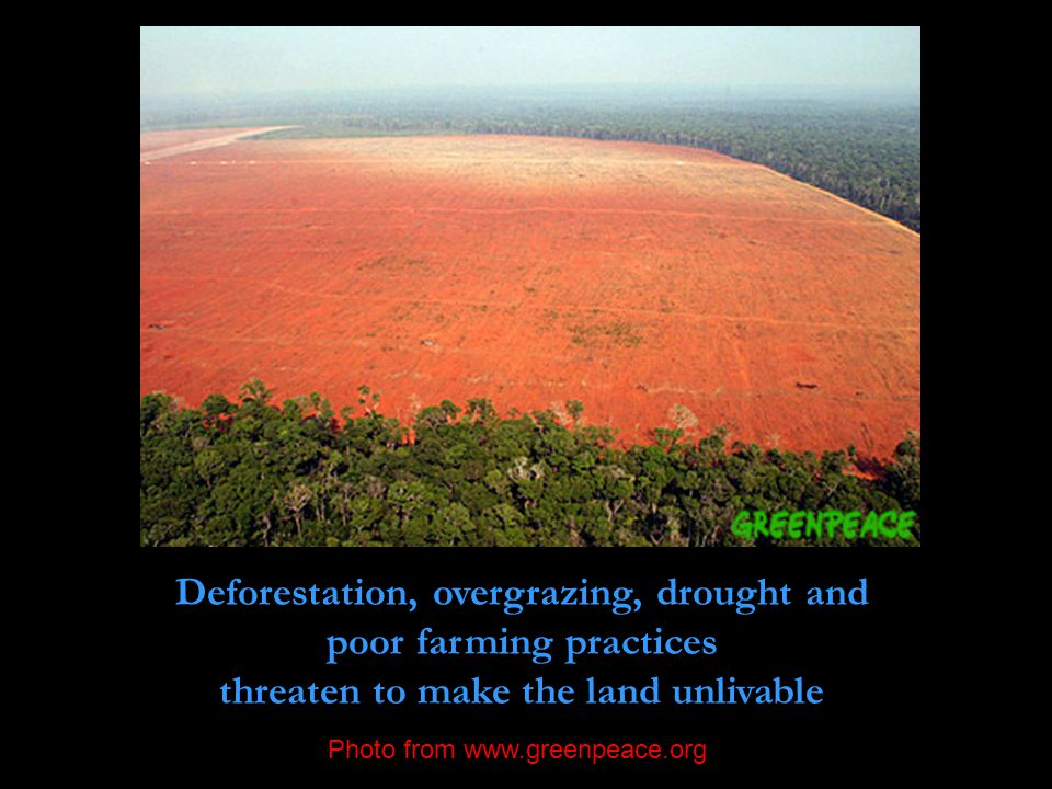 Deforestation, overgrazing, drought and poor farming practices threaten to make the land unlivable Photo from www.greenpeace.org