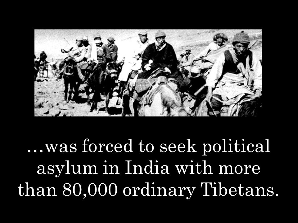 …was forced to seek political asylum in India with more than 80,000 ordinary Tibetans.