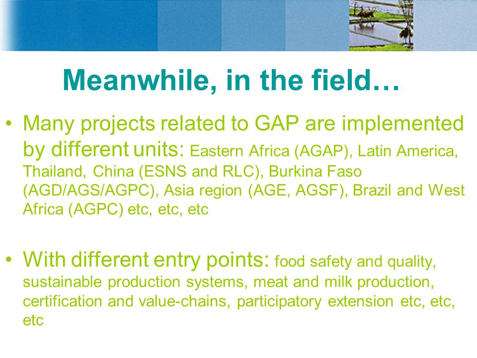 Meanwhile, in the field… Many projects related to GAP are implemented by different units: Eastern Africa (AGAP), Latin America, Thailand, China (ESNS and RLC), Burkina Faso (AGD/AGS/AGPC), Asia region (AGE, AGSF), Brazil and West Africa (AGPC) etc, etc, etc With different entry points: food safety and quality, sustainable production systems, meat and milk production, certification and value-chains, participatory extension etc, etc, etc