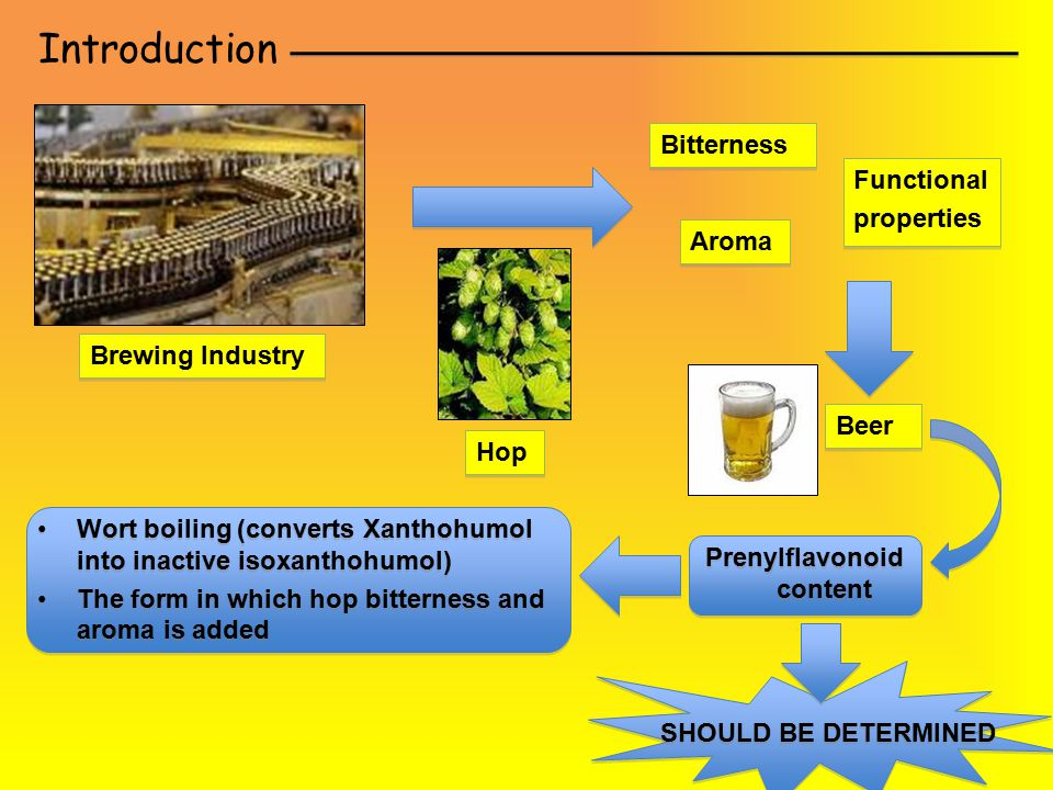 Introduction Brewing Industry Hop Bitterness Aroma Functional properties Functional properties Beer Prenylflavonoid content Wort boiling (converts Xan