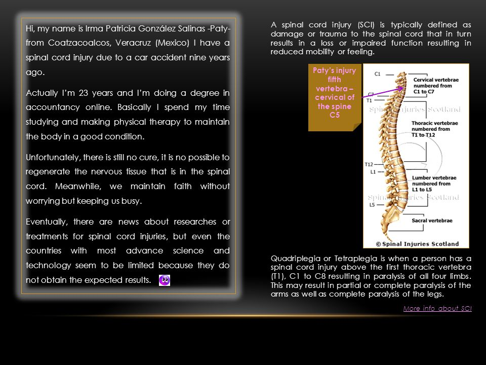 A spinal cord injury (SCI) is typically defined as damage or trauma to the spinal cord that in turn results in a loss or impaired function resulting i