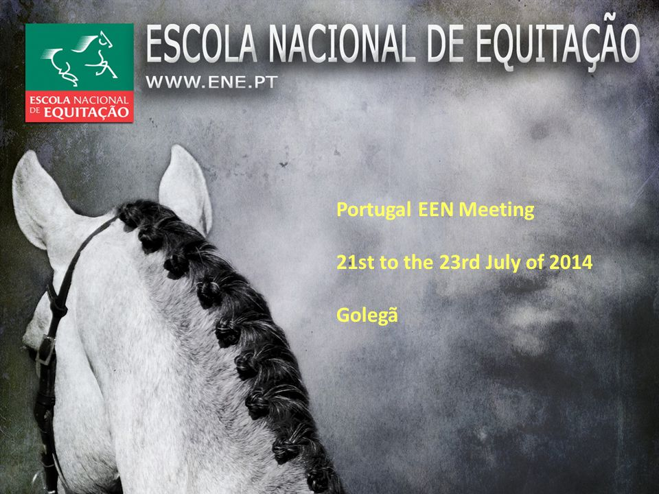 ACTUALY So, the National Trainers Formation Program includes all the sport disciplines and equitation as well.