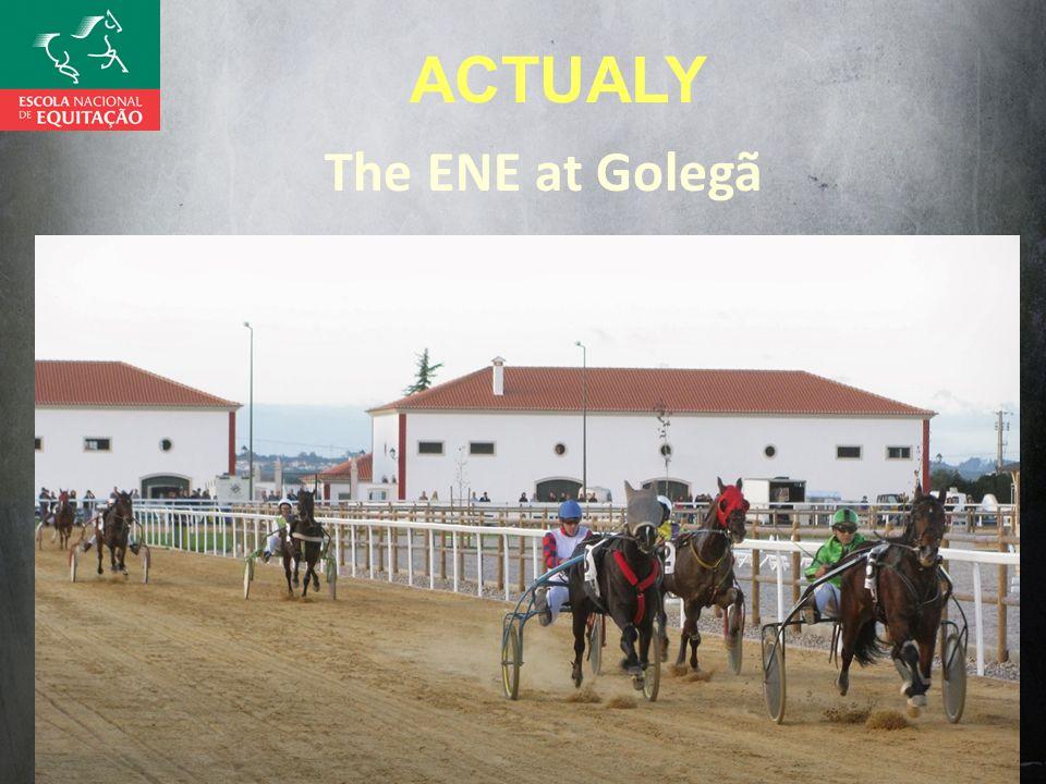 The ENE at Golegã