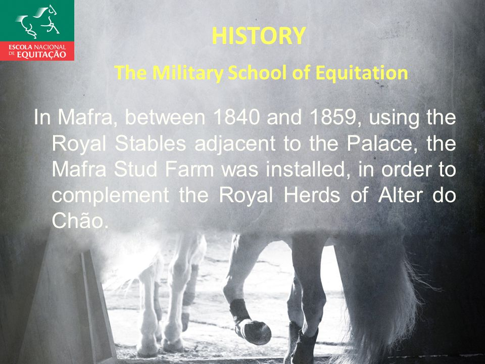 HISTORY The Military School of Equitation In Mafra, between 1840 and 1859, using the Royal Stables adjacent to the Palace, the Mafra Stud Farm was installed, in order to complement the Royal Herds of Alter do Chão.