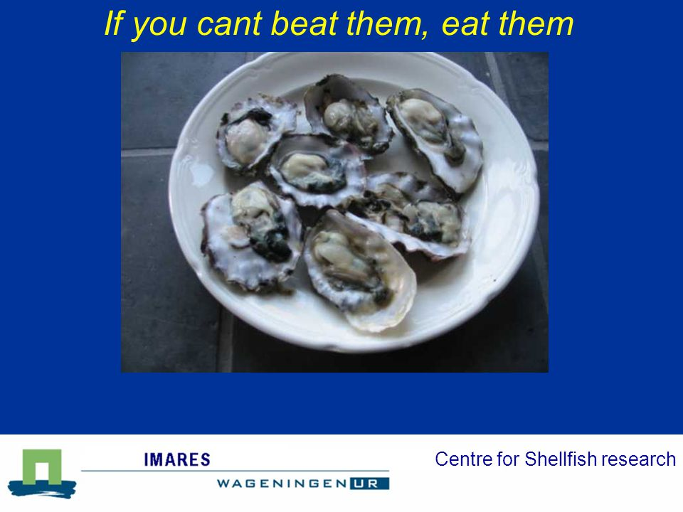 Centre for Shellfish research If you cant beat them, eat them