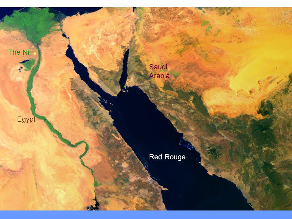 The Red Sea וגם הים האדום