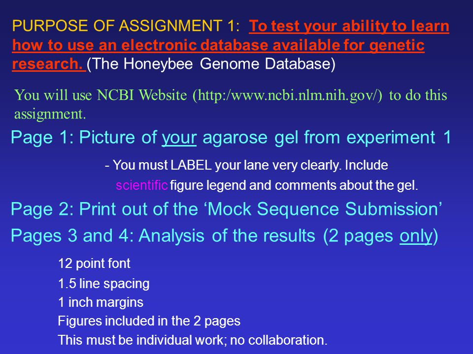 Page 1: Picture of your agarose gel from experiment 1 - You must LABEL your lane very clearly.