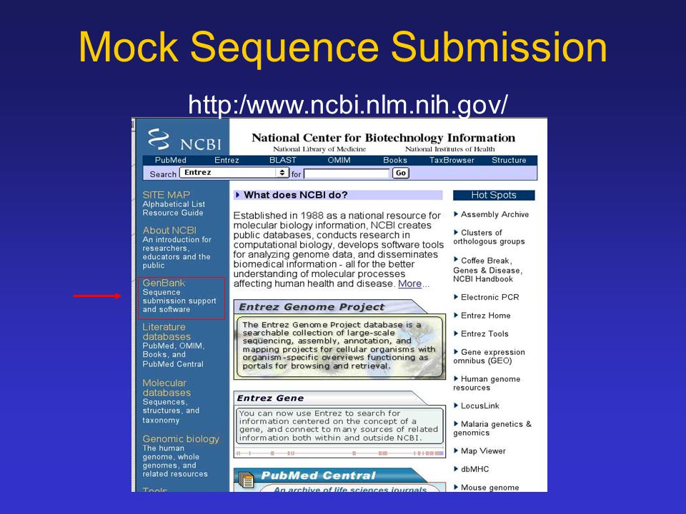 Mock Sequence Submission http:/www.ncbi.nlm.nih.gov/