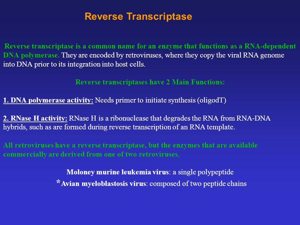 Reverse Transcriptase Reverse transcriptase is a common name for an enzyme that functions as a RNA-dependent DNA polymerase.