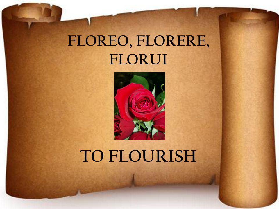 FLOREO, FLORERE, FLORUI TO FLOURISH