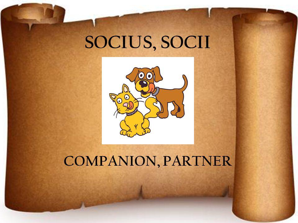 SOCIUS, SOCII COMPANION, PARTNER