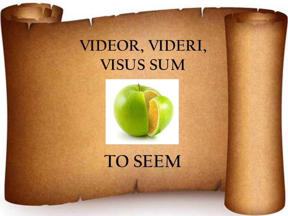 VIDEOR, VIDERI, VISUS SUM TO SEEM