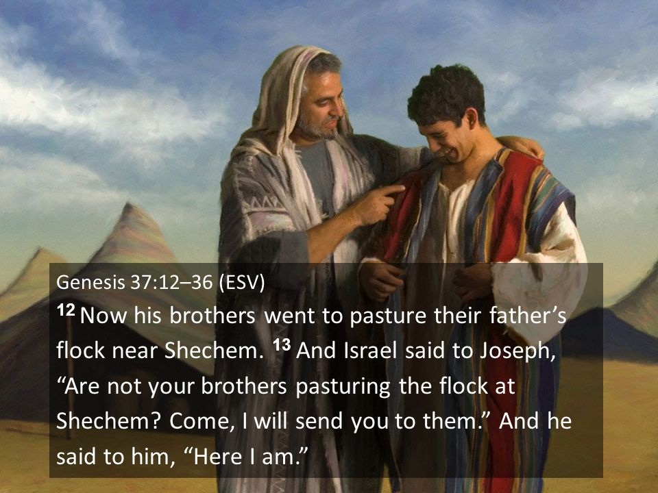 "Genesis 37:12–36 (ESV) 12 Now his brothers went to pasture their father's flock near Shechem. 13 And Israel said to Joseph, ""Are not your brothers pas"