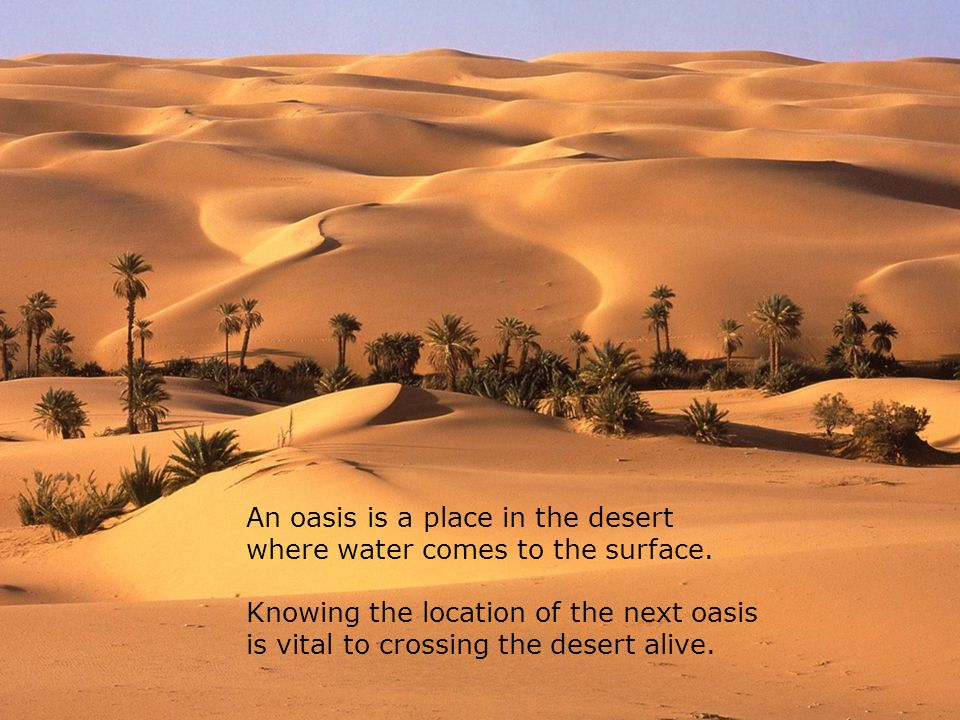 An oasis is a place in the desert where water comes to the surface. Knowing the location of the next oasis is vital to crossing the desert alive.