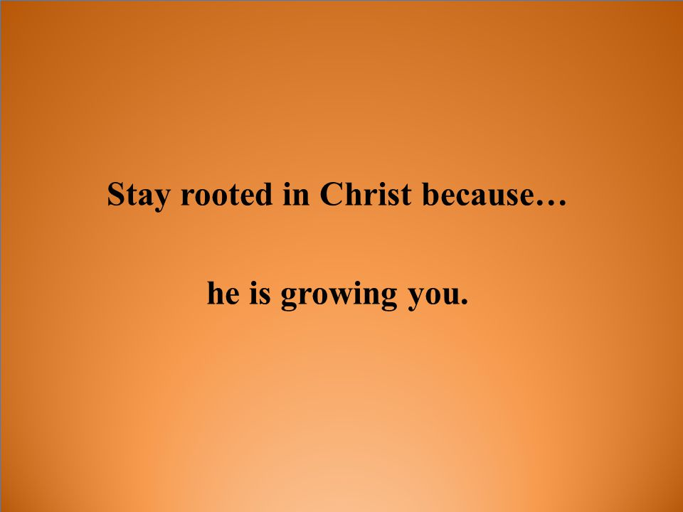 Stay rooted in Christ because… he is growing you.