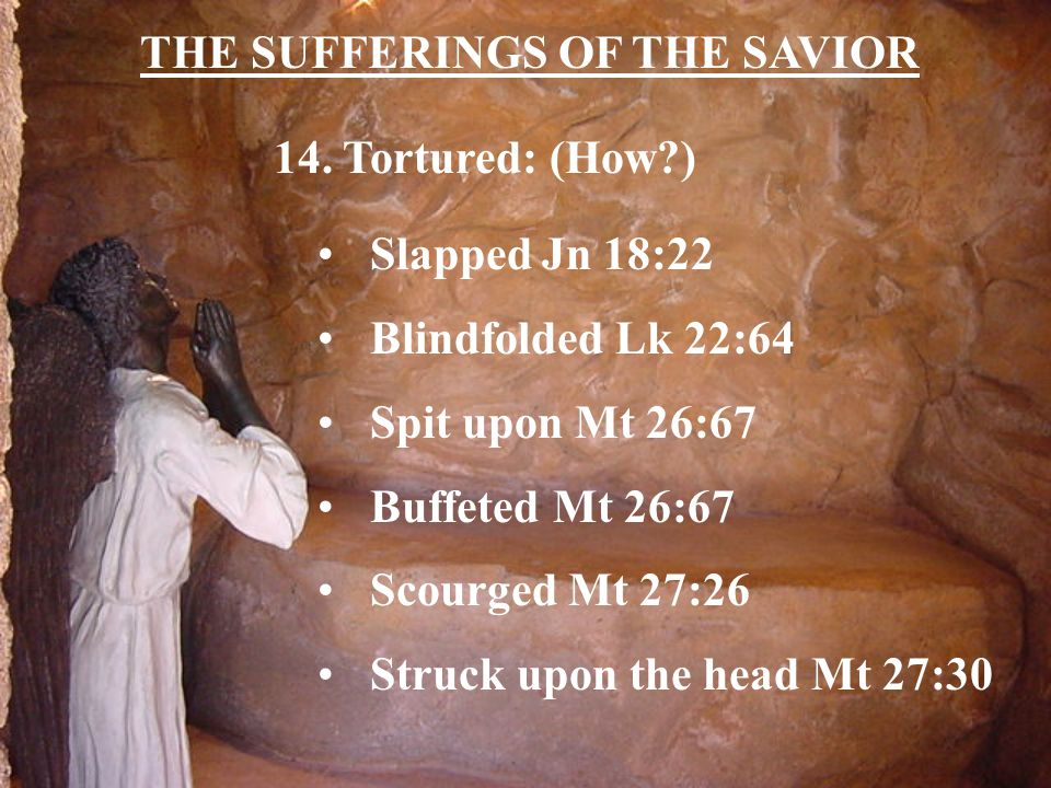 THE SUFFERINGS OF THE SAVIOR 14.
