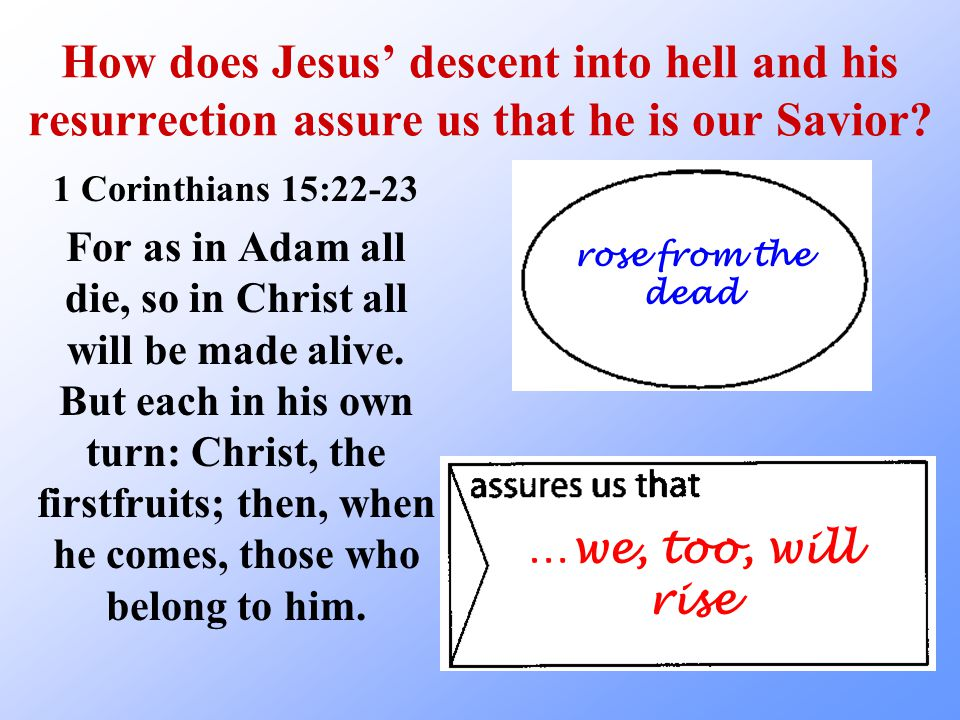 How does Jesus' descent into hell and his resurrection assure us that he is our Savior? 1 Corinthians 15:22-23 For as in Adam all die, so in Christ al