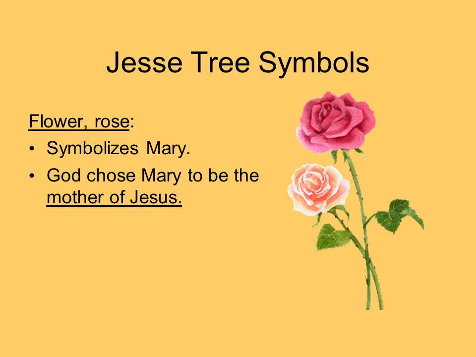 Jesse Tree Symbols Flower, rose: Symbolizes Mary. God chose Mary to be the mother of Jesus.