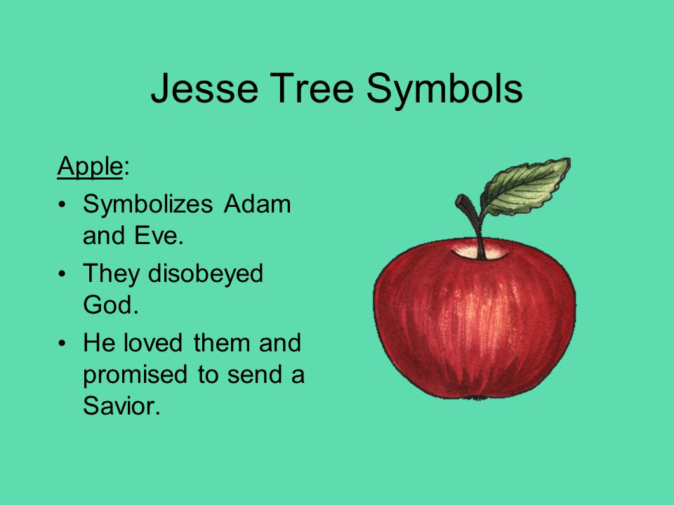 Jesse Tree Symbols Ark and Rainbow: Symbolizes Noah.