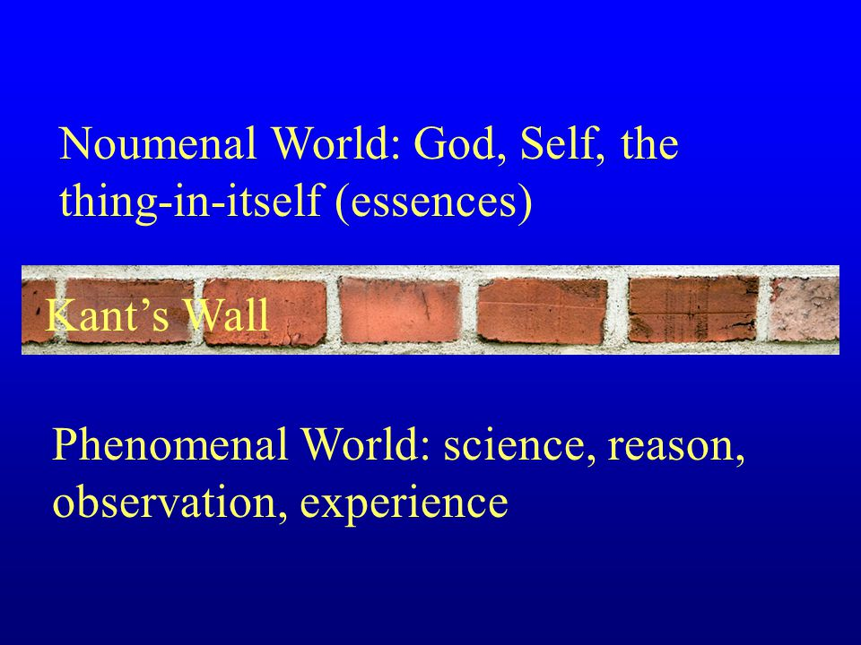 Noumenal World: God, Self, the thing-in-itself (essences) Phenomenal World: science, reason, observation, experience Kant's Wall