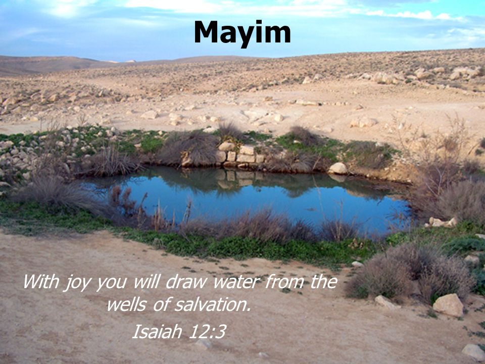 Mayim With joy you will draw water from the wells of salvation. Isaiah 12:3