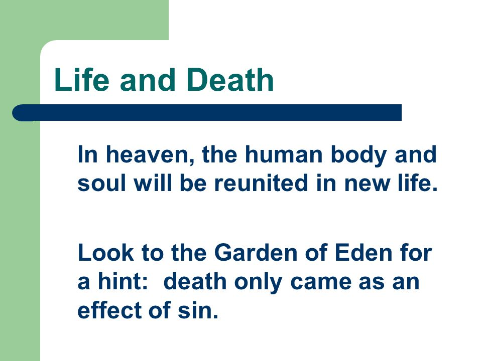 Life and Death What is the destiny of the human person.