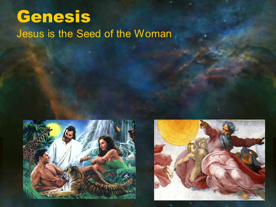 Genesis Jesus is the Seed of the Woman