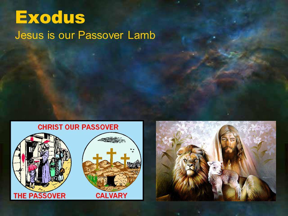 Nahum Jesus is the Feet on the mountains publishing peace