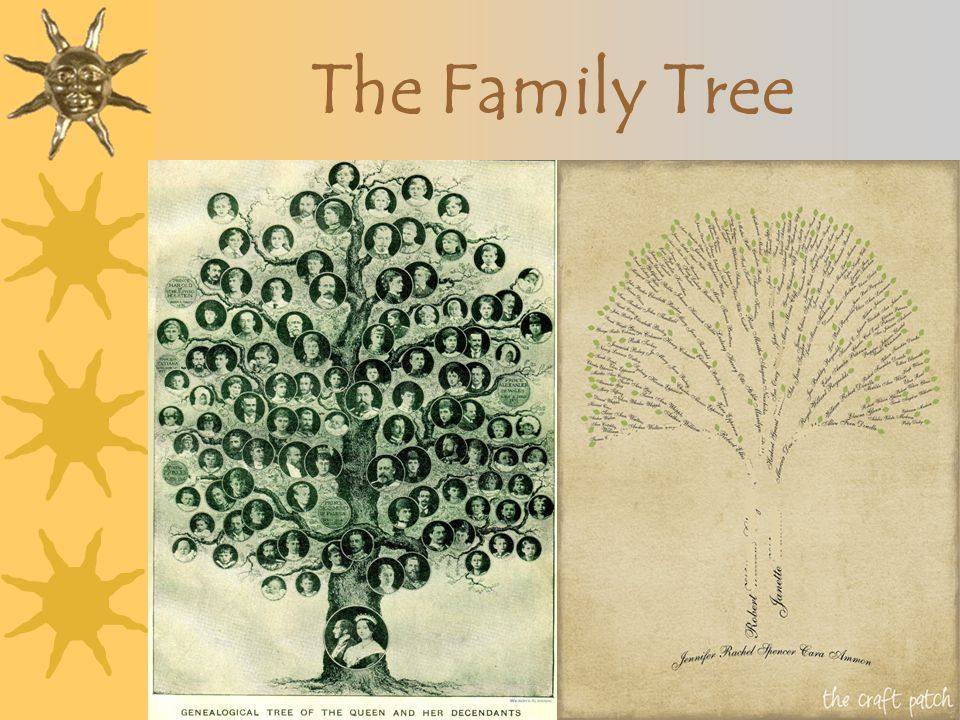 The Archetypal Tree The Tree of Souls, Avatar The Tree of Life (what kind of life?)