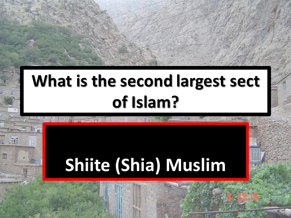 What is the second largest sect of Islam? Shiite (Shia) Muslim