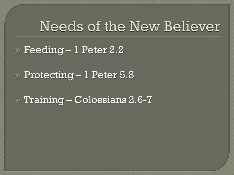 Feeding – 1 Peter 2.2  Protecting – 1 Peter 5.8  Training – Colossians 2.6-7
