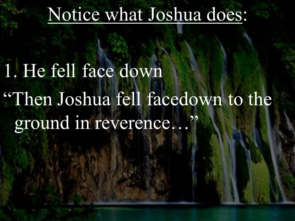 """Notice what Joshua does: 1. He fell face down """"Then Joshua fell facedown to the ground in reverence…"""""""