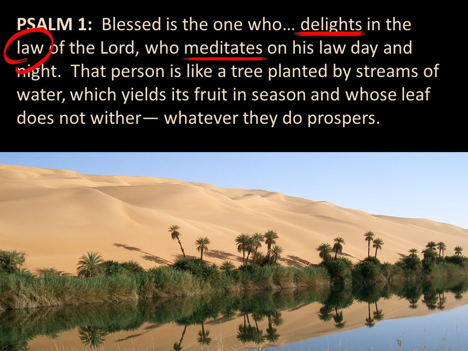 PSALM 1: Blessed is the one who… delights in the law of the Lord, who meditates on his law day and night.