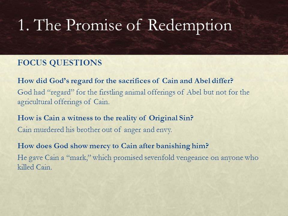 How did God's regard for the sacrifices of Cain and Abel differ.