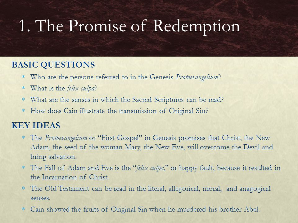 BASIC QUESTIONS  Who are the persons referred to in the Genesis Protoevangelium.