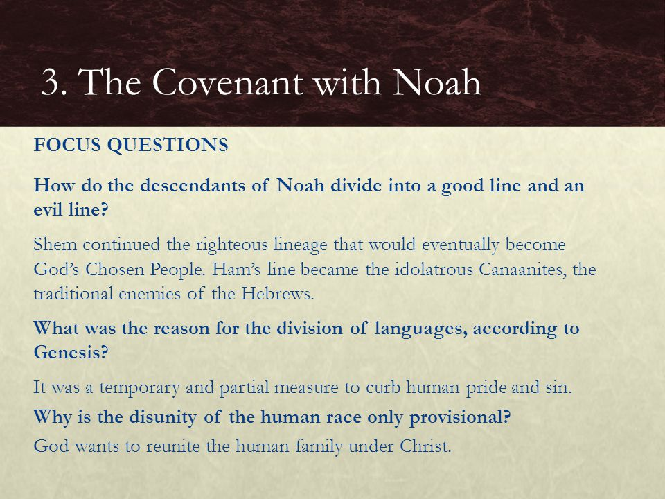 How do the descendants of Noah divide into a good line and an evil line.