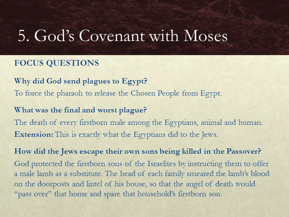 Why did God send plagues to Egypt.To force the pharaoh to release the Chosen People from Egypt.