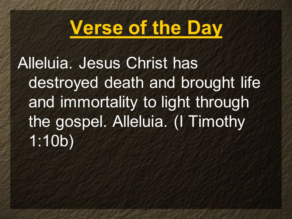 Verse of the Day Alleluia.