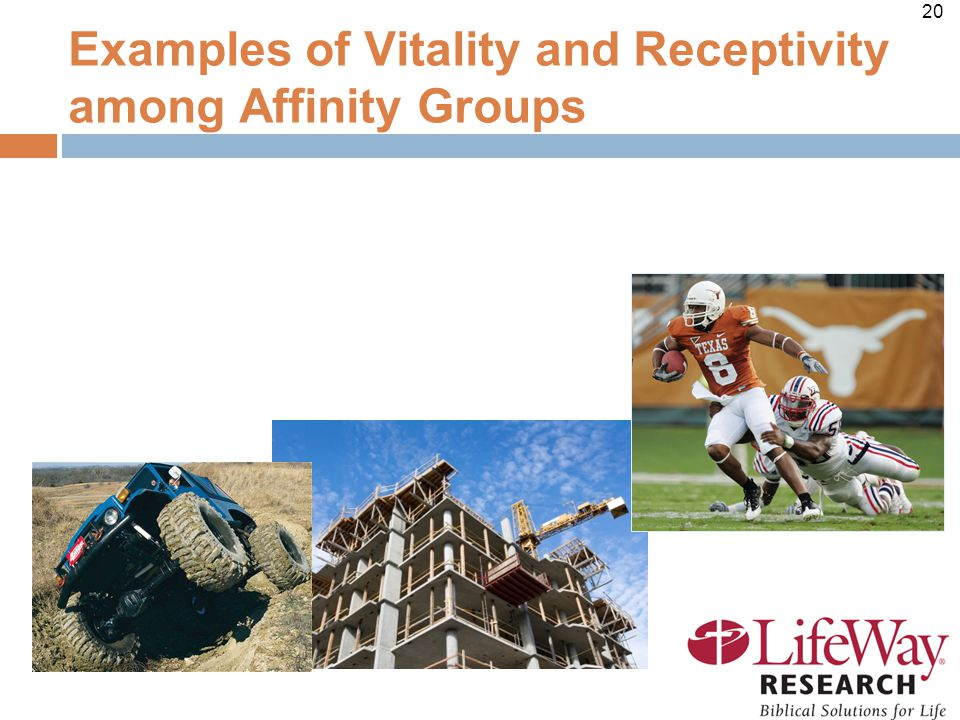 20 Examples of Vitality and Receptivity among Affinity Groups
