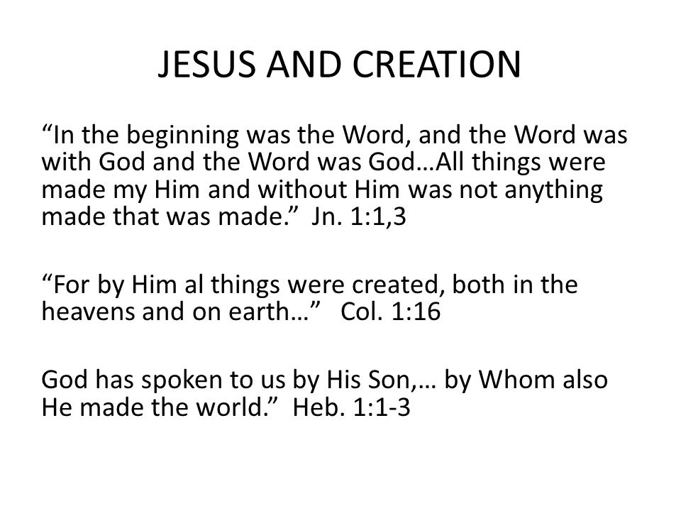 JESUS AND CREATION In the beginning was the Word, and the Word was with God and the Word was God…All things were made my Him and without Him was not anything made that was made. Jn.