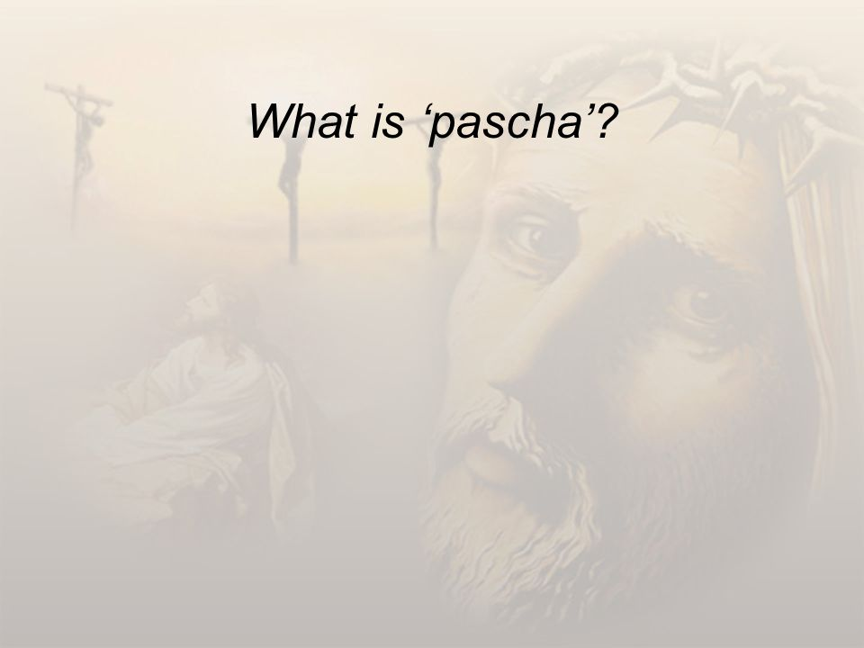What is 'pascha'?