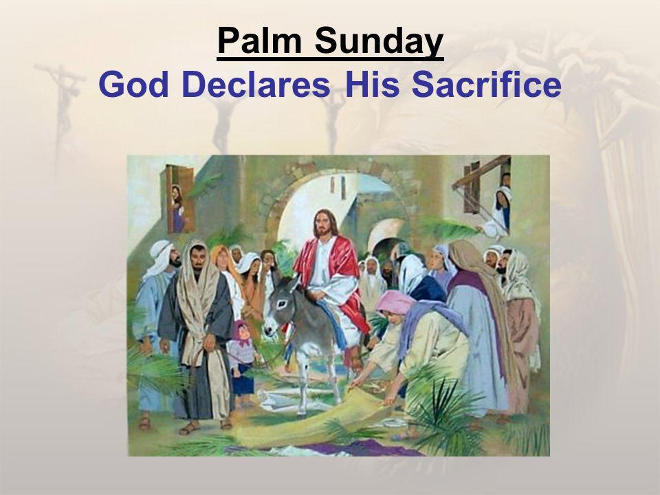 Palm Sunday God Declares His Sacrifice