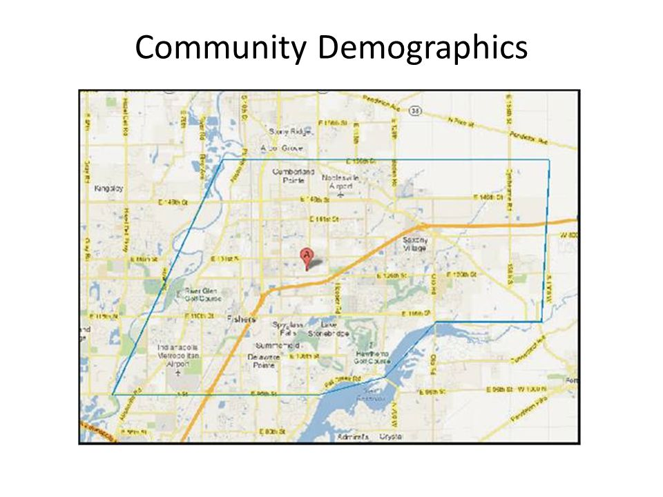 Community Demographics