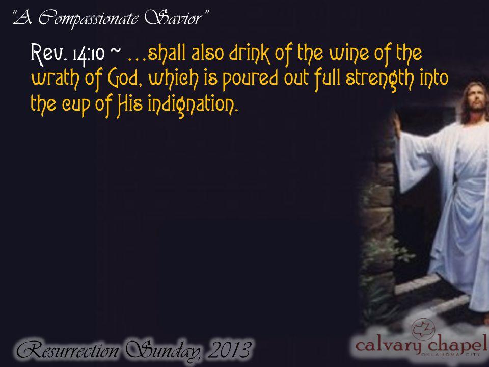 A Compassionate Savior Rev.
